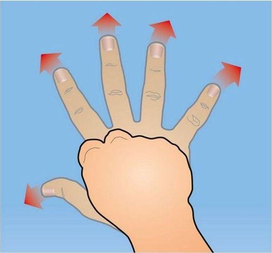 Простые и эффективные упражнения, которые позволят вам в короткие сроки увеличить силу хвата.7