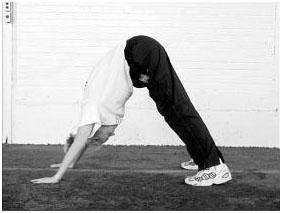 Разминочные и общефизические упражнения волейболистов10