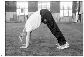 Разминочные и общефизические упражнения волейболистов14