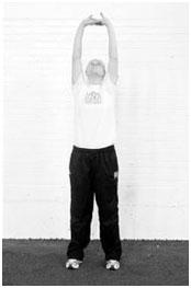 Разминочные и общефизические упражнения волейболистов2