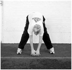 Разминочные и общефизические упражнения волейболистов5