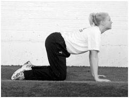 Разминочные и общефизические упражнения волейболистов7