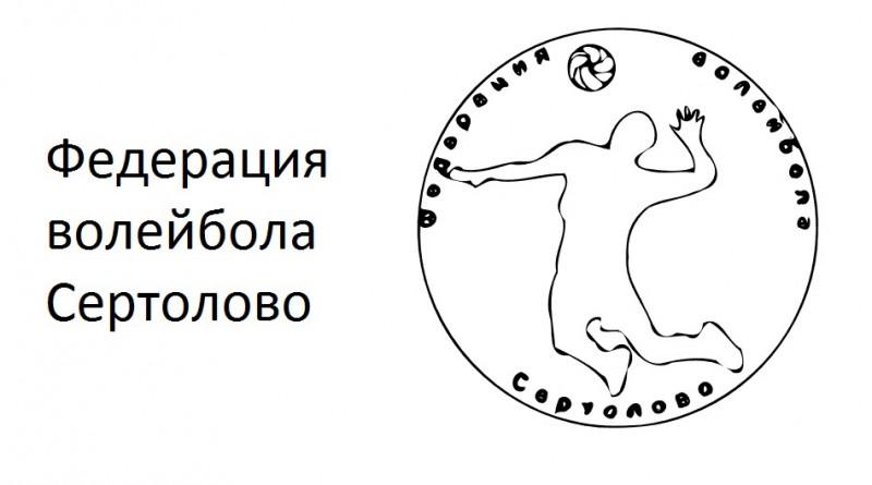 Внутреннее первенство XVII открытого Кубка МО Сертолово по волейболу