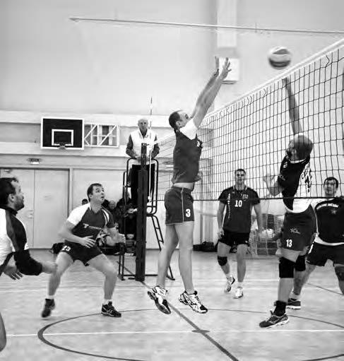 XVI открытый Кубок МО Сертолово по волейболу